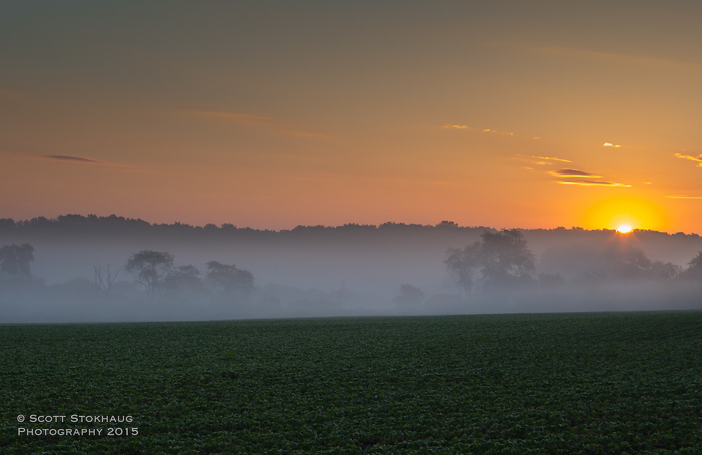Foggy sunrise somewhere in southern Wisconsin