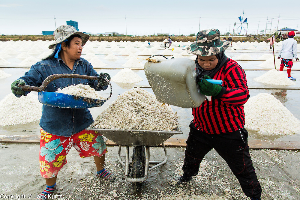 24 APRIL 2013 - SAMUT SONGKHRAM, SAMUT SONGKHRAM, THAILAND: d Workers load salt into a wheelbarrow during the salt harvest in Samut Songkhram, Thailand. The 2013 salt harvest in Thailand and Cambodia has been impacted by unseasonably heavy rains. Normally, the salt fields are prepped for in December, January and February, when they're leveled and flooded with sea water. Salt is harvested from the fields from late February through May, as the water evaporates leaving salt behind. This year rains in December and January limited access to the fields and rain again in March and April has reduced the amount of salt available in the fields. Thai salt farmers are finishing the harvest as best they can, but the harvest in neighboring Cambodia ended 6 weeks early because of rain. Salt has traditionally been harvested in tidal basins along the coast southwest of Bangkok but industrial development in the area has reduced the amount of land available for commercial salt production and now salt is mainly harvested in a small part of Samut Songkhram province.      PHOTO BY JACK KURTZ