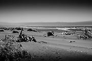 The Oregon coast near Gold Beach