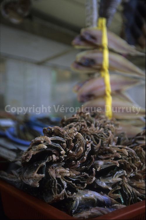 DRIED FISHES IN A MARKET, YEONGYIONG ISLAND, SOUTH KOREA // poissons séches dans un marche de l'ile de Yeongyiong, Corée du Sud