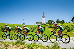 Peloton with church near Slovenska Bistrica during 2nd Stage of 26th Tour of Slovenia 2019 cycling race between Maribor and  Celje (146,3 km), on June 20, 2019 in Celje, Maribor, Slovenia. Photo by Vid Ponikvar / Sportida
