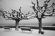 Bare trees and park benchs are covered in snow in this scene along Lake Geneva in the Lausanne area of Switzerland.