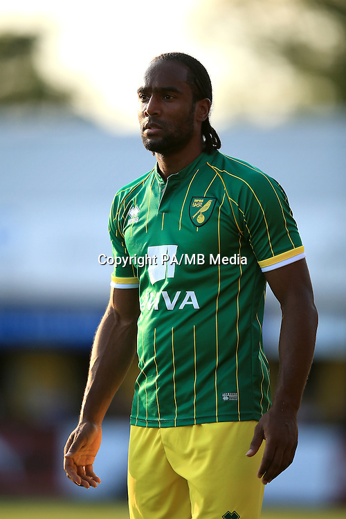 Cameron Jerome, Norwich City