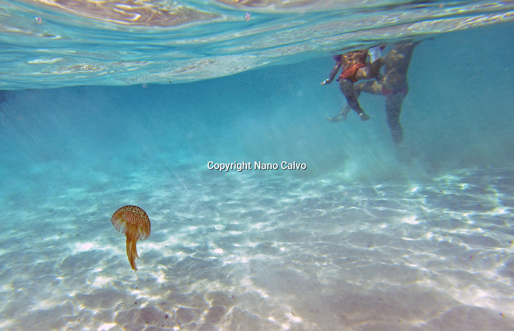 Underwater shot of jellyfish and bathers in Cala Macarella, Menorca