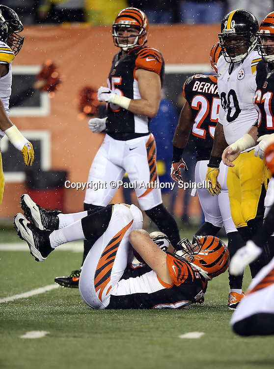 Cincinnati Bengals guard Clint Boling (65) recovers a second quarter fumble after a sack on Cincinnati Bengals quarterback AJ McCarron (5) for a loss of 11 yards that gives the Bengals a third down with 23 yards to go for a first down during the NFL AFC Wild Card playoff football game against the Pittsburgh Steelers on Saturday, Jan. 9, 2016 in Cincinnati. The Steelers won the game 18-16. (©Paul Anthony Spinelli)
