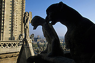 France. Paris. Notre Dame cathedral. Gargoyles ecorate a balcony on the Chimeras gallery of Notre Dame Cathedral in Paris. Viollet-le-Duc restored the cathedral in the mid 1800s.