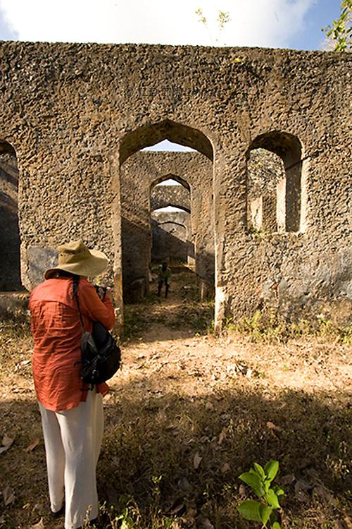 Ruins of Dunga Palace