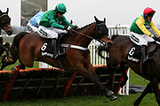 Winner L'Ami Serge and Daryl Jacob (Green Cap)  clear the last in The Betway Aintree Hurdle Race at Aintree, Liverpool, United Kingdom on 12 April 2018. Picture by Craig Galloway.