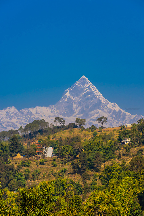 Fishtail, aka Machapuchare (6493 m; 21,302 ft), one of the peaks of the Annapurna Massif of the Himalayas, seen from Lekhnath, Nepal.
