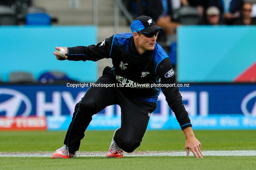Martin Guptill of the Black Caps fielding during the ICC Cricket World Cup match between New Zealand and Sri Lanka at Hagley Oval in Christchurch, New Zealand. Saturday 14 February 2015. Copyright Photo: John Davidson / www.Photosport.co.nz