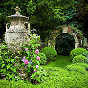 Steven Rossi Photography, SR Photo, garden photography, Fairfield County gardens, Connecticut gardens