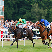 Primitorio and Martin Lane winning the 6.00 race