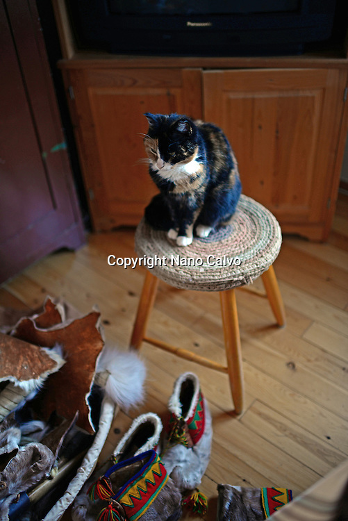 Cat on stool. Traditional Sámi arts and crafts. Inside the home of Tuula Airamo, a Sámi descendant, and Reindeer farmer, by Muttus Lake. Inari, Lapland, Finland