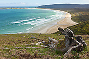 Tautuku Beach, Catlins, New Zealand