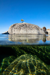 """Bonsai Tree on Lake Tahoe Boulder 5"" - Photograph of a bonsai like tree on a boulder near State Line Point in Crystal Bay, Lake Tahoe. Over-under photo where half the lens is under water, shot from a kayak in the morning."
