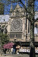 Paris. Notre dame Cathedral  . The Seine river quays,    Paris  France