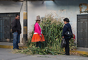 An indigenous woman sells her harvest to locals on the streets of Caraz, Ancash, Peru.