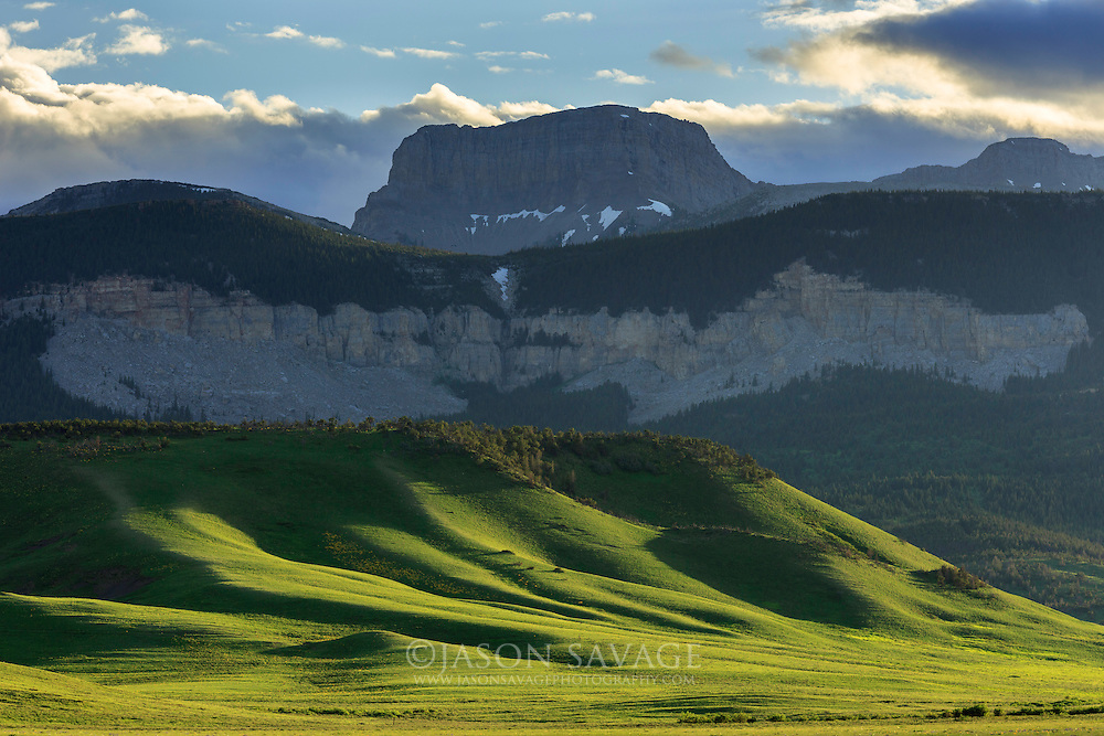 Black Leaf Wildlife Management Area. Rocky Mountain Front, Montana.