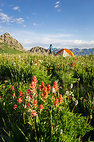 A backcountry camper admires the views of Mt. Timpanogos and the wildflowers in Utah's Wasatch Mountains.