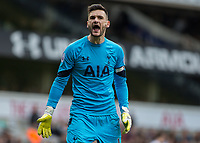 Football - 2016 / 2017 Premier League - Tottenham Hotspur vs. Southampton<br /> <br /> Hugo Lloris of Tottenham screams at the crowd to encourage his team on in the dying minutes at White Hart Lane.<br /> <br /> COLORSPORT/DANIEL BEARHAM