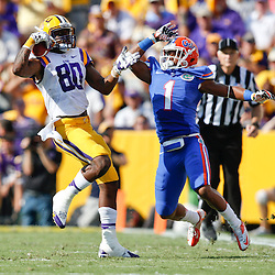 Oct 12, 2013; Baton Rouge, LA, USA; LSU Tigers wide receiver Jarvis Landry (80) catches a pass as Florida Gators defensive back Vernon Hargreaves (1) during the first half of a game at Tiger Stadium. Mandatory Credit: Derick E. Hingle-USA TODAY Sports