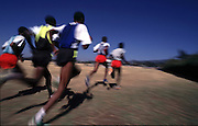 Speed training for cross country runners. The best will have the lucrative opportunity of racing abroad.