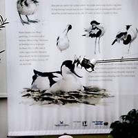 Nederland, Zeist, 30 oktober 2009..Op vrijdag 30 en zaterdag 31 oktober organiseert Vogelbescherming Nederland de Tuinvogeldagen in en om haar pand in Zeist..Tijdens de Tuinvogeldagen wordt er doorlopend informatie gegeven over het voeren van vogels en hoe u uw tuin vogelvriendelijk kunt maken..Verder wordt er doorlopend informatie gegeven over het werk van Vogelbescherming en er zijn lezingen over tuin- en stadsvogels. Op het centrale plein kunt u onder het genot van een kopje koffie de Tv-serie 'Een tuin vol vogels' volgen. Voor kinderen liggen er grappige vogelplaten om in te kleuren en kunnen ze proberen om als een vogel met een pincet smarties uit een voedersilo te pakken..Netherlands Bird Protection organizes the Garden Bird Days and gives information to people ito attract more birds into their gardens.