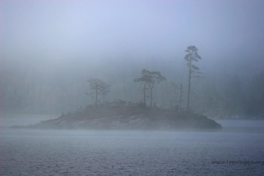 Morgentåke over Selnessjøen, morning fog at Selnessjøen