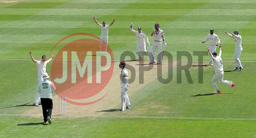 Nottinghamshire's Matt Carter unsuccessfully appeals for the LBW of Somerset's Tim Groenewald. - Photo mandatory by-line: Harry Trump/JMP - Mobile: 07966 386802 - 15/06/15 - SPORT - CRICKET - LVCC County Championship - Division One - Day Two - Somerset v Nottinghamshire - The County Ground, Taunton, England.