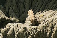 BOSQUE PETRIFICADO SARMIENTO, PROV. DEL CHUBUT, PATAGONIA, ARGENTINA
