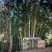 Second World War concrete bunker in woodland in Dover Kent England