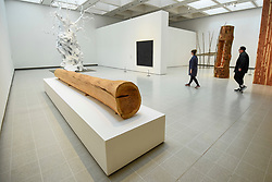 "© Licensed to London News Pictures. 02/03/2020. LONDON, UK. A general  view of exhibition space. Preview of ""Among The Trees"" exhibition at the Hayward Gallery on the Southbank.  Artworks by 38 international artists explore man's relationship with trees and forests at a time when the destruction of forests is accelerating in show which runs 4 March to 17 May 2020.  Photo credit: Stephen Chung/LNP"