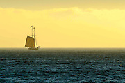 Toshiba Tall Ships Festival in Dana Point California