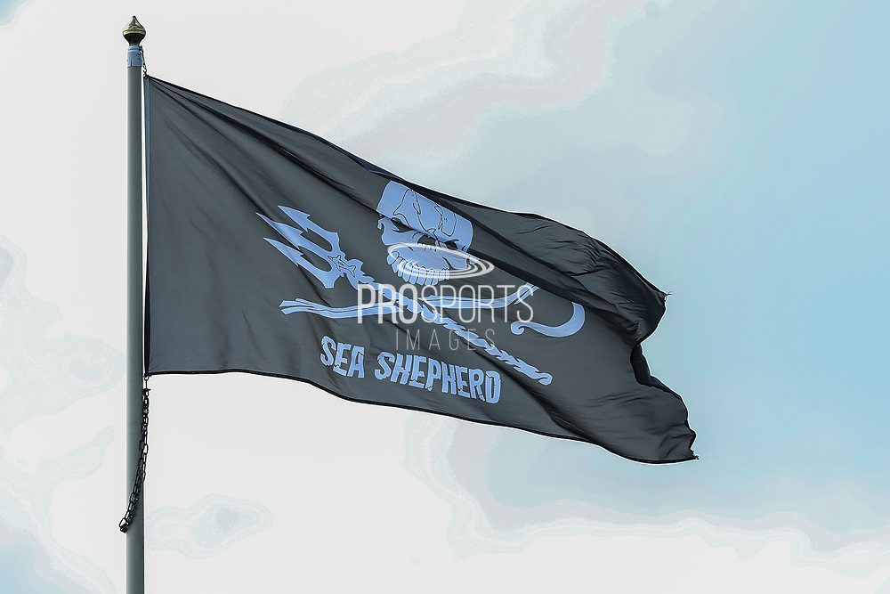 Sea Shepherd flag at The New Lawn, home of Forest Green Rovers during the EFL Sky Bet League 2 match between Forest Green Rovers and Grimsby Town FC at the New Lawn, Forest Green, United Kingdom on 17 August 2019.