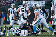 Oakland Raiders strong safety T.J. Carrie (38) celebrates a tackle by middle linebacker Cory James (57) on Carolina Panthers running back Fozzy Whittaker (43) at Oakland Coliseum in Oakland, Calif., on November 27, 2016. (Stan Olszewski/Special to S.F. Examiner)
