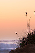 Silhouette of sea oats and sand dunes against  a peach colored sky and surf on a Outer Banks beach.