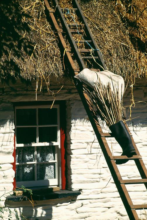 Ireland, Bunratty, Bunratty Folk Park, boot on ladder at cottage