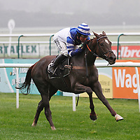 Heather Royal and Andrew Tinkler winning the 1.10 race