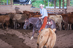 September 24, 2017 - Minshall Farm Cutting 6, held at Minshall Farms, Hillsburgh Ontario. The event was put on by the Ontario Cutting Horse Association. Riding in the $25,000 Novice Horse Non-Pro Class is Greg Wilde on Bobby Cee Lena owned by the rider.