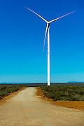 Wind Turbine in the west coast landscape