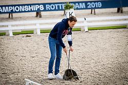 Van Lieren Laurens, NED, <br /> EC Rotterdam 2019<br /> © Hippo Foto - Sharon Vandeput<br /> 21/08/19