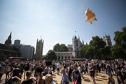 © Licensed to London News Pictures. 13/07/2018. London, UK. A giant inflatable balloon depicting President Trump as a baby is flown over Parliament Square. President Trump is on the second day of a four day visit to the UK. Photo credit: Peter Macdiarmid/LNP