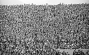 Massive crowds in the stands watching the All Ireland Senior Gaelic Football Final Kerry v Down in Croke Park on the 22nd September 1968. Down 2-12 Kerry 1-13. gaa,