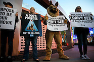 "20170127 - PETA Protests ""A Dog's Purpose"" Movie in Hollywood"