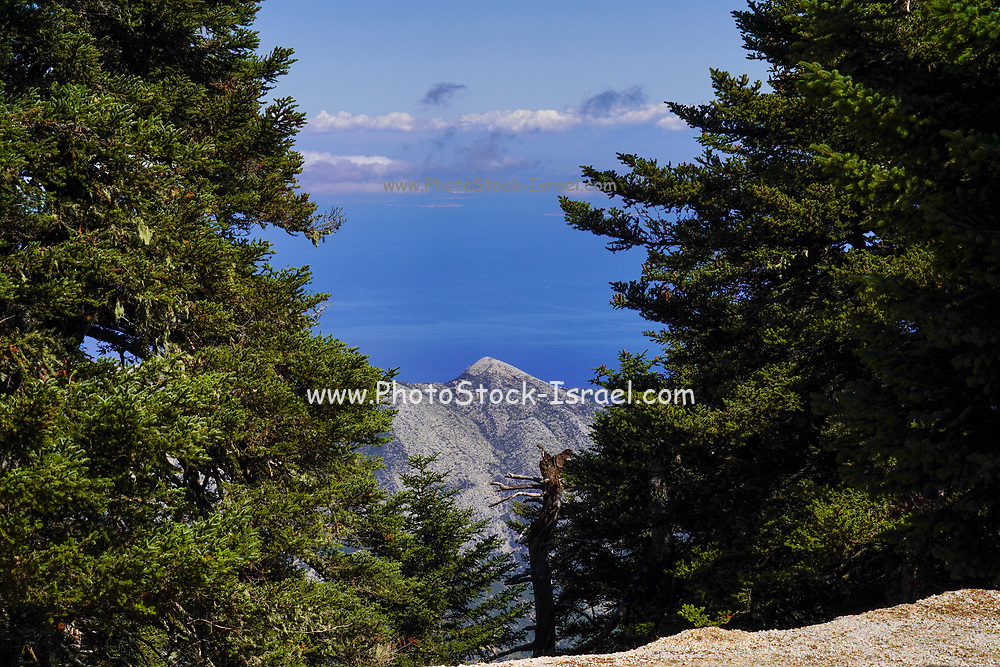 Panoramic view of the coast and sea from Aenos (Ainos) mountain on the Greek Island of Cephalonia, Ionian Sea, Greece
