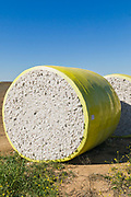 Round cotton bales in field after harvest near Toobeah, Queensland, Australia.