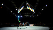 Lambert Leclezio, (MRI), Timothy vd Wilhelminahoeve, Roost Hanemaaijer Slottje - Individuals Mens Technical Vaulting - Alltech FEI World Equestrian Games™ 2014 - Normandy, France.<br /> © Hippo Foto Team - Jon Stroud<br /> 04/09/2014