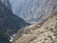 Trekking path and mountain river in the Langtang Valley, Nepal