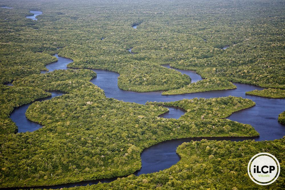 USA, Florida, Everglades National Park,Shark River  meander through mangroves. Aerial