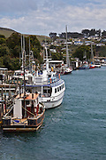 Riverton, Fishing Boats at Pier, New Zealand